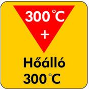 Hoallo_300_piktogramm
