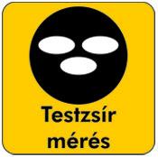 Testzsir_meres_pikogramm